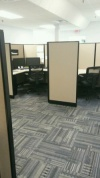 commercial janitorial services atlanta clean carpet